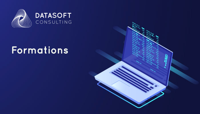 Datasoft Consulting formations big data