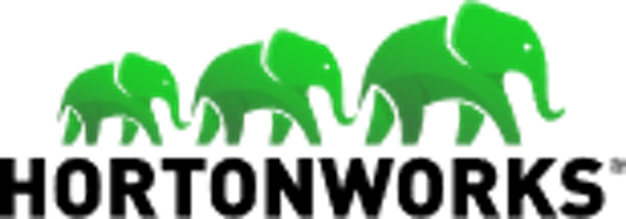 Datasoft Consulting Big data logo hortonworks