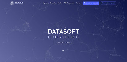 Datasoft Consulting Big data